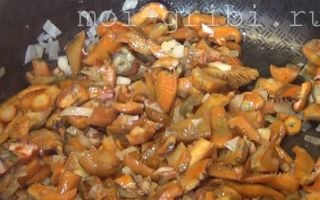 Рыжики на зиму —  18 рецептов заготовок с пошаговыми фото