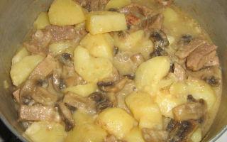 Картошка с грибами в сметане: рецепт картофеля в духовке и мультиварке, жареного на сковороде