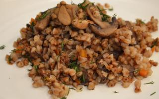Гречка с опятами: фото и рецепты приготовления грибных блюд