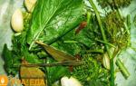 Засолка огурцов без уксуса на зиму — 26 рецептов хрустящих огурцов в банках с пошаговыми фото