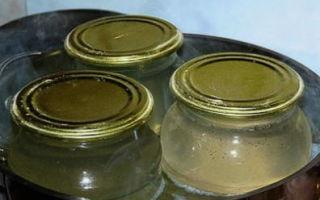 Березовый сок на зиму — 19 рецептов в домашних условиях с пошаговыми фото