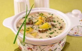 Супы из белых грибов с плавленым сыром: рецепты грибных первых блюд