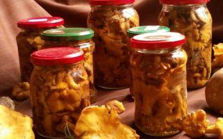 Как мариновать лисички на зиму в банках: рецепты маринованных грибов с фото и видео