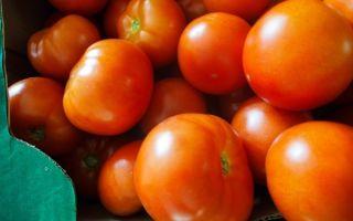 Салат из помидоров на зиму без стерилизации — рецепт с пошаговыми фото