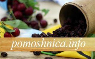 Варенье из вишни без сахара на зиму — 5 рецептов с пошаговыми фото