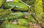 Огурцы с семенами (зернами) горчицы маринованные на зиму — 35 рецептов хрустящих огурцов в банках