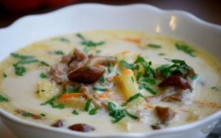 Грибной суп-пюре из опят: фото и рецепты, как приготовить суп-пюре из опят