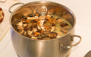 Суп с грибами: рецепты с фото, как сварить домашний грибной суп из свежих, сушеных грибов