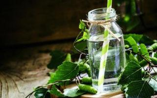 Напиток из березового сока на зиму — рецепт в домашних условиях в фото пошагово