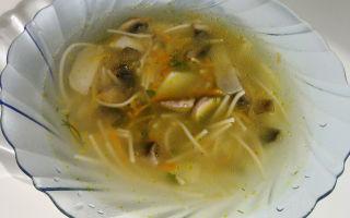 Как приготовить супы из шампиньонов и вермишелью: пошаговые рецепты куриных и других блюд