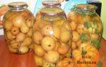 Компот из груш с лимонной кислотой на зиму — простой пошаговый рецепт