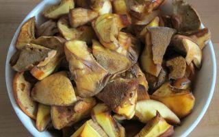 Как обработать маслята после сбора: что делать с грибами после сбора урожая