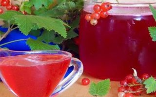Компот из малины и красной смородины на 3 литровую банку на зиму — простой пошаговый рецепт