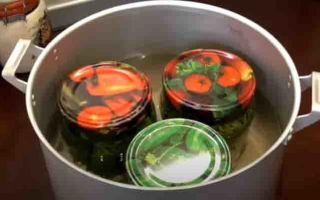Огурцы с горчицей без стерилизации в банках на зиму — 23 рецепта с пошаговыми фото
