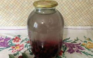 Компот из вишни на зиму в банках — пошаговый рецепт приготовления с фото