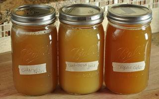 Яблочный сок через мясорубку в домашних условиях на зиму — рецепт с пошаговыми фото