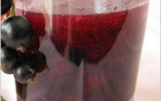 Сок из ранеток через соковыжималку в домашних условиях на зиму — простой рецепт в домашних условиях
