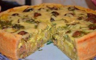 Рецепты открытого пирога с грибами с фото: приготовление с курицей и сыром, картошкой и капустой