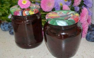 Варенье из сливы с какао на зиму — 5 рецептов с фото пошагово