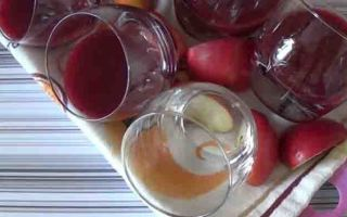Желе из брусники с желатином на зиму — рецепт с пошаговыми фото