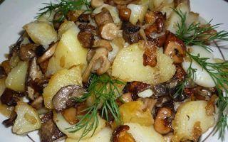 Картошка с грибами: рецепты и фото блюд из картофеля с грибами в духовке, горшочке, сковороде