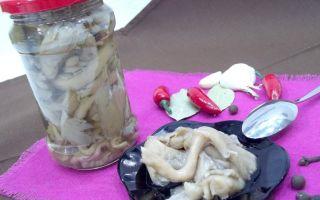 Как приготовить белые грибы со сметаной: рецепты с фото блюд в духовке, горшочке и мультиварке