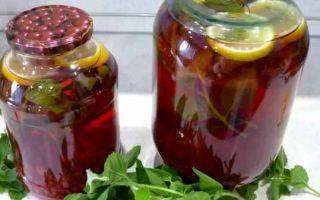 Компот из вишни с мятой на зиму — рецепт приготовления с пошаговыми фото