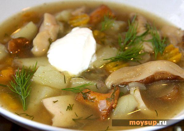 суп грибница из лесных грибов