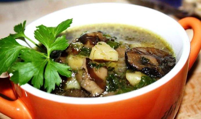 Как сварить суп из свежих маслят: фото и рецепты грибных супов с маслятами