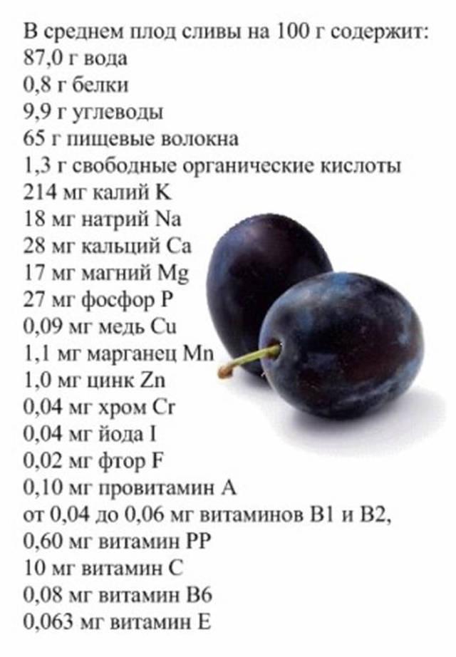 Повидло из сливы на зиму - 5 простых рецептов с фото пошагово