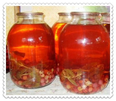 Компот из крыжовника на зиму без стерилизации - рецепт с пошаговыми фото