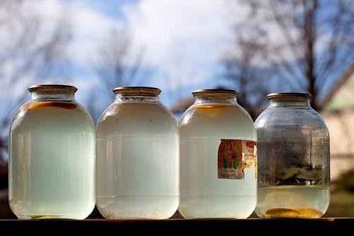Березовый сок на зиму без кипячения - рецепт в домашних условиях с фото пошагово