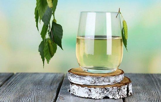 Как заготовить березовый сок на зиму - рецепт в домашних условиях в фото пошагово