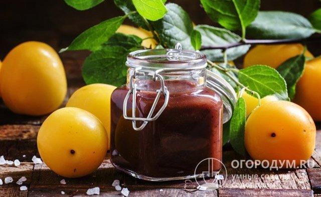 Варенье из алычи с косточками с апельсином на зиму - рецепт с пошаговыми фото