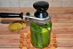 Маринованные огурцы с уксусом без стерилизации на зиму - 91 рецепт с пошаговыми фото