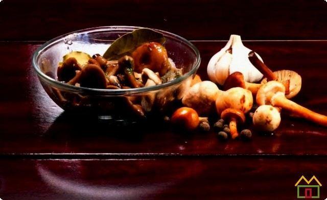 Соленые опята в банках на зиму - 5 простых рецептов приготовления с фото пошагово