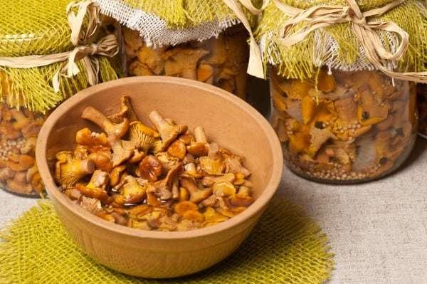 Соленые лисички на зиму в банках - рецепт приготовления с пошаговыми фото