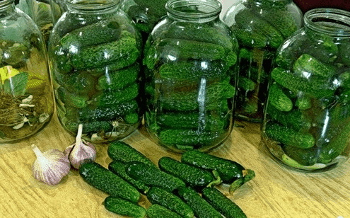 Консервированные огурцы на зиму - 157 рецептов хрустящих огурцов в банках