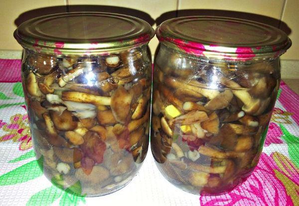 Жареные подосиновики на зиму - рецепт с пошаговыми фото