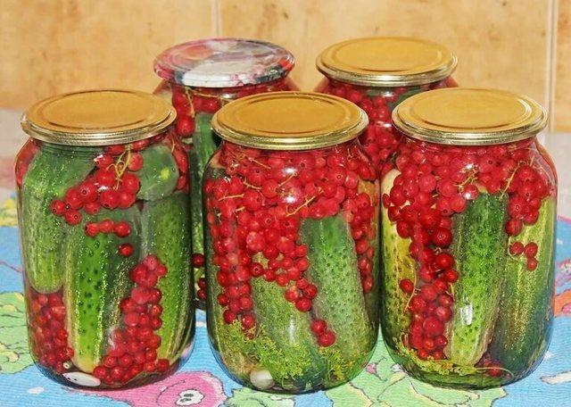 Хрустящие маринованные огурцы в банках на зиму - 10 рецептов с фото пошагово