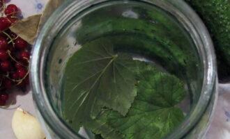 Огурцы с водкой на зиму - 9 рецептов хрустящих огурцов в банках