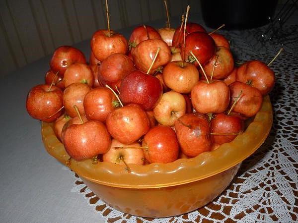 Компот из яблок дички на зиму - рецепт с пошаговыми фото
