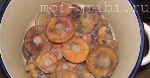 Рыжики на зиму -  18 рецептов заготовок с пошаговыми фото