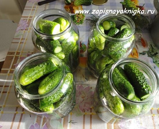 Огурцы без уксуса с лимонной кислотой на зиму - 16 рецептов в банках с пошаговыми фото