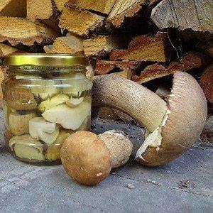 Маринованные белые грибы на зиму - 13 рецептов в банках с пошаговыми фото