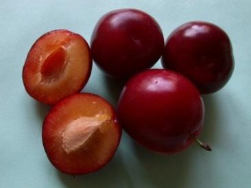 Соус из красной алычи к мясу на зиму - очень вкусный рецепт с пошаговыми фото