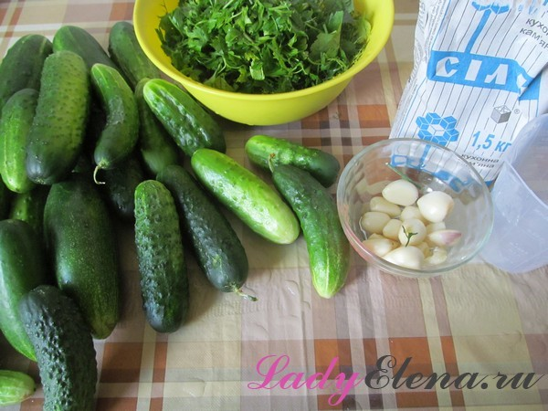 Огурцы с петрушкой без стерилизации на зиму - рецепт с пошаговыми фото