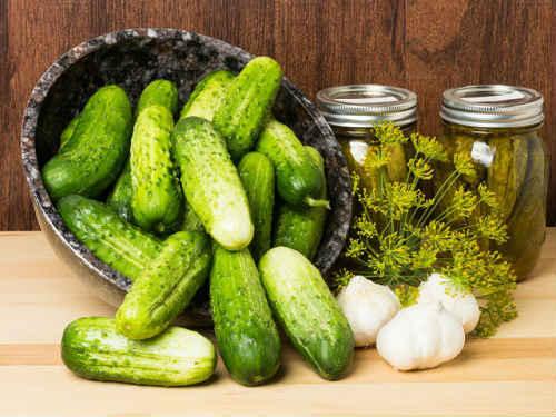 Соленые огурцы холодным способом в банках на зиму - 5 рецептов с фото пошагово