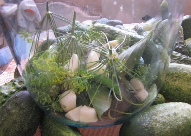 Огурцы под пластмассовую крышку на зиму - рецепт с пошаговыми фото
