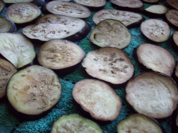 Баклажаны в морозилку на зиму - рецепт с пошаговыми фото
